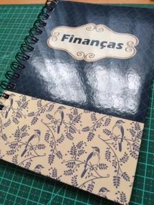 agenda financeira
